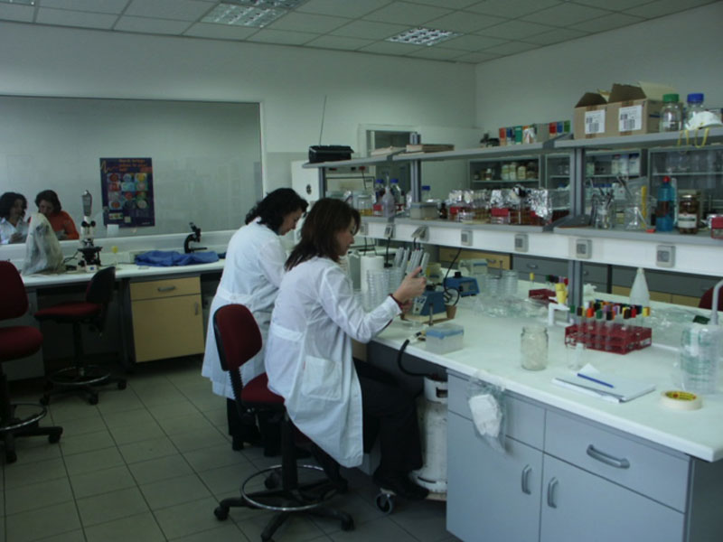 MICROBIOLOGICAL ANALYSIS OF FOOD PRODUCTS